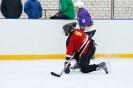 2015. gada Rēzeknes novada kausa izcīņa hokejā Cirmā un Ludzā_29