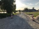 """Ceļa no Ozolaines TN līdz PII """"Jāņtārpiņš"""" rekonstrukcija_30"""