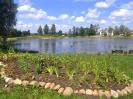 Pūpolu ūdenskrātuves teritorijas labiekārtošana un apzaļumošana_10