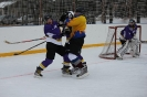 Hokeja turnīrs Ludzā 11.02.2017._16