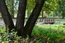 Lazānu parks_5