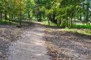 Lazānu parks_6