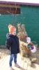 Lieldienas bērnudārzā_6
