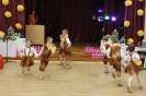 Pirmsskolas vecuma bērnu talantu šovs Ozolaines TN 30.03.2016_55