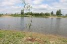 Pūpolu ūdenskrātuves teritorijas labiekārtošana un apzaļumošana _15