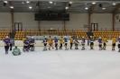 Ritiņu hokejistu komandas spēle