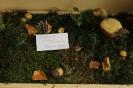 Rudens svētki Ozolaines PII