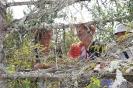 Sieviešu klubiņš apguva zināšanas dārzkopībā_6