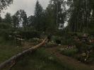 Stiprs vējš nopoista Bekšu kapsētu!_22